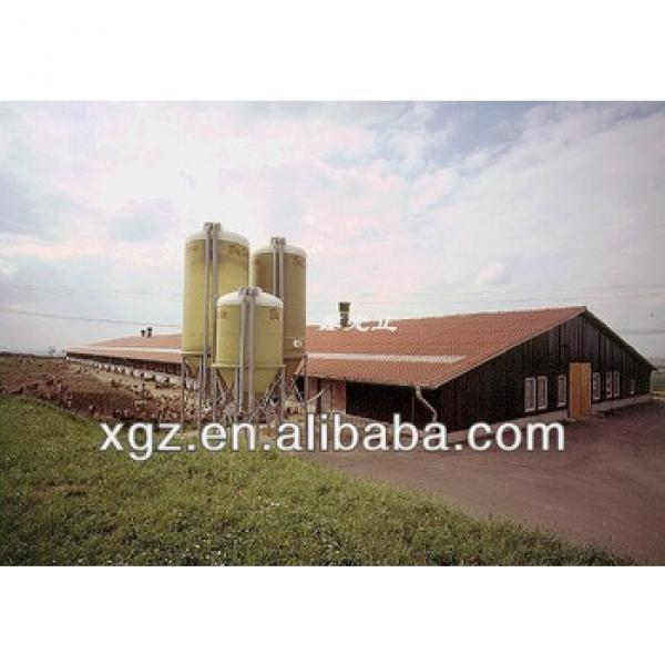 Industrial light frame steel chicken house #1 image