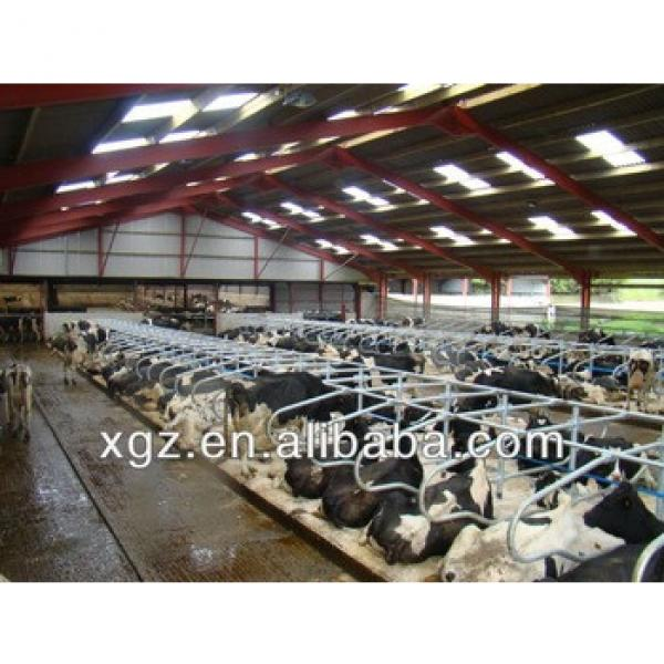 Prefabricated steel building steel structure house cattle shed #1 image
