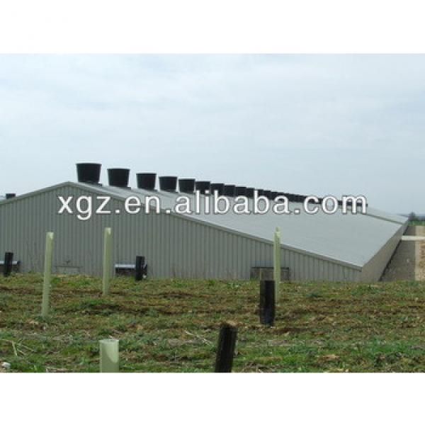 Light steel structure poultry house design/chicken poultry house #1 image