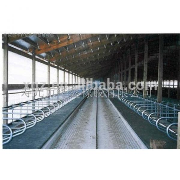 prefabricated steel structure Cows farm sheds #1 image