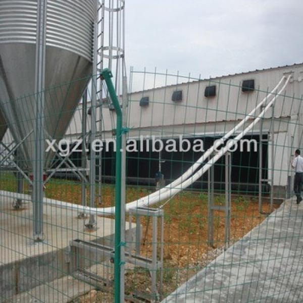 chicken egg poultry farm #1 image