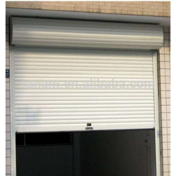 electric upward sliding single/double garage door #1 image