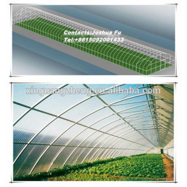 Agriculture galvanized steel structure greenhouse for planting #1 image