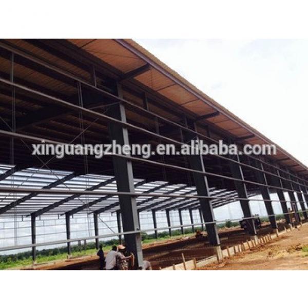 Xinguangzheng Steel Structure Buildings Warehouse #1 image