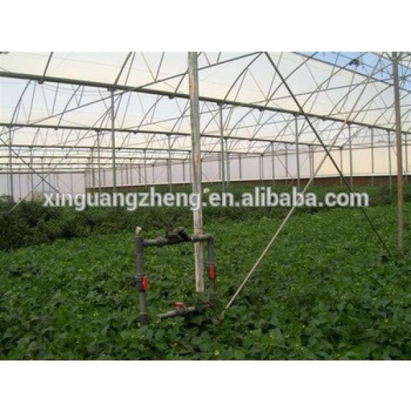 Multi Span Commercial Agricultural Glass Greenhouse #1 image