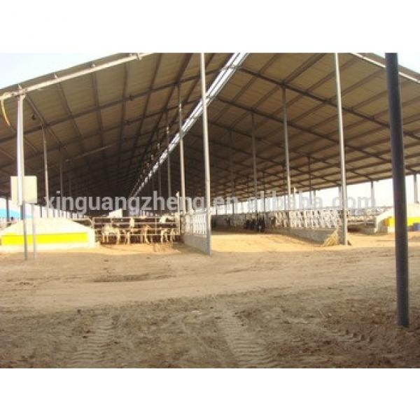 cheap steel structure cow farm house in Bangladesh #1 image