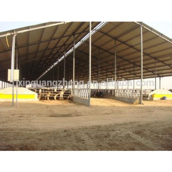 steel structure cow farm house in Pakistan #1 image