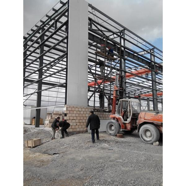 Steel structure plant #1 image